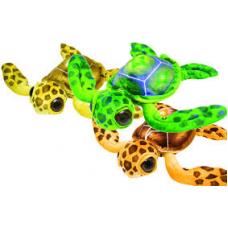 Big Eye Turtle 3er Set